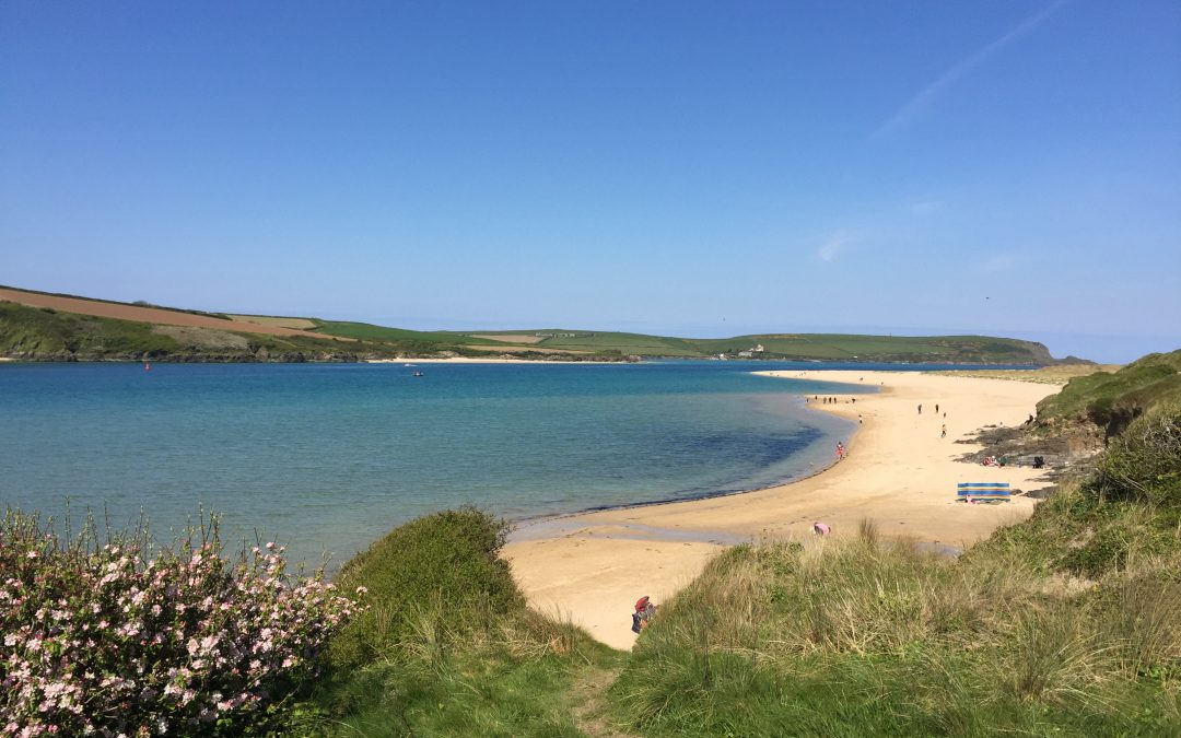 Today on the Camel Estuary