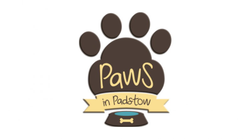 Paws in Padstow