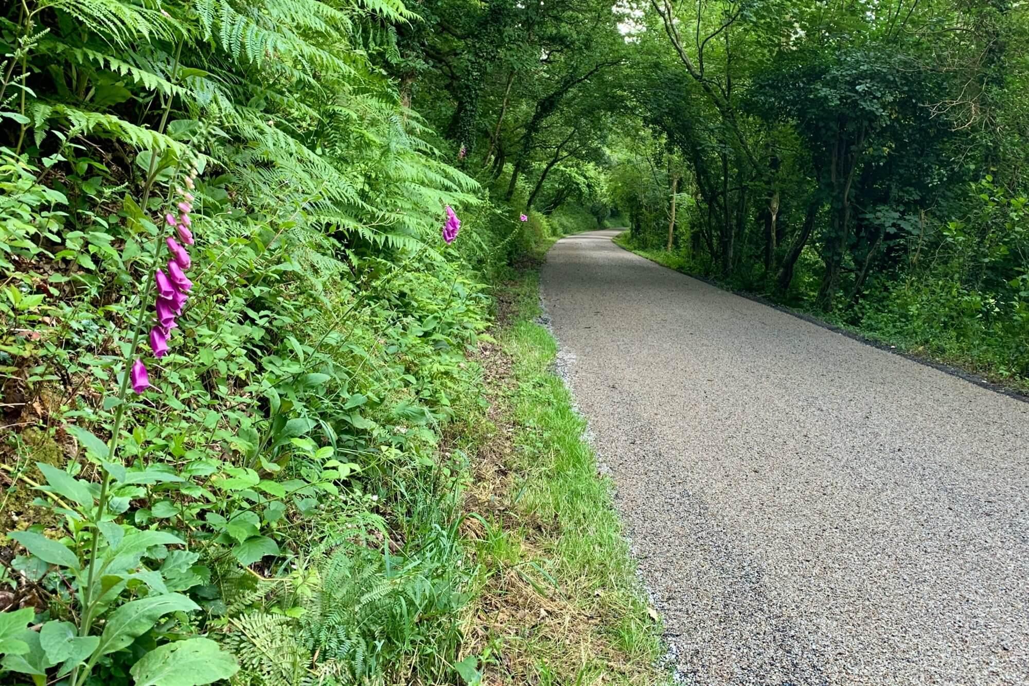 Grogley Halt to Dunmere