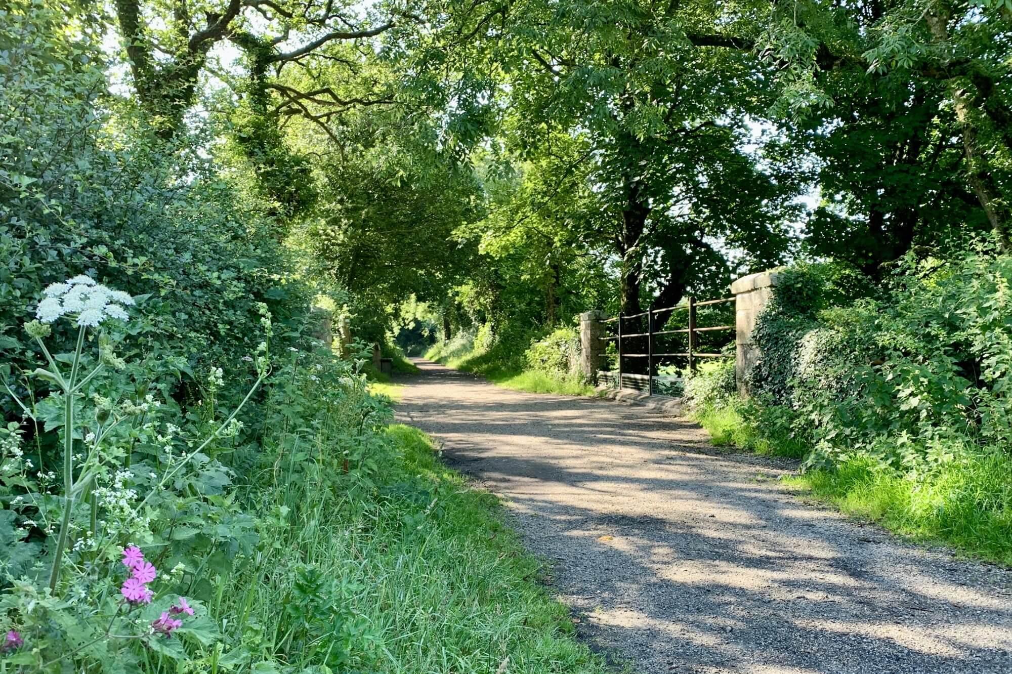 Wenfordbridge to Helland Bridge